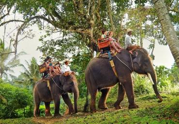 Bali-Elephant-Ride