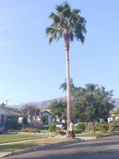 Hollywood LA Sept 18